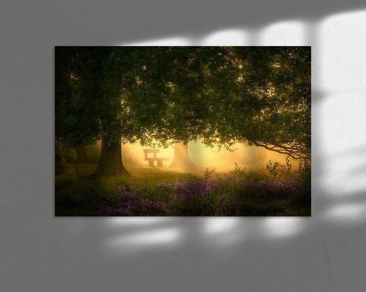 Sfeerimpressie: Droombankje onder Eikenboom van Jeroen Lagerwerf