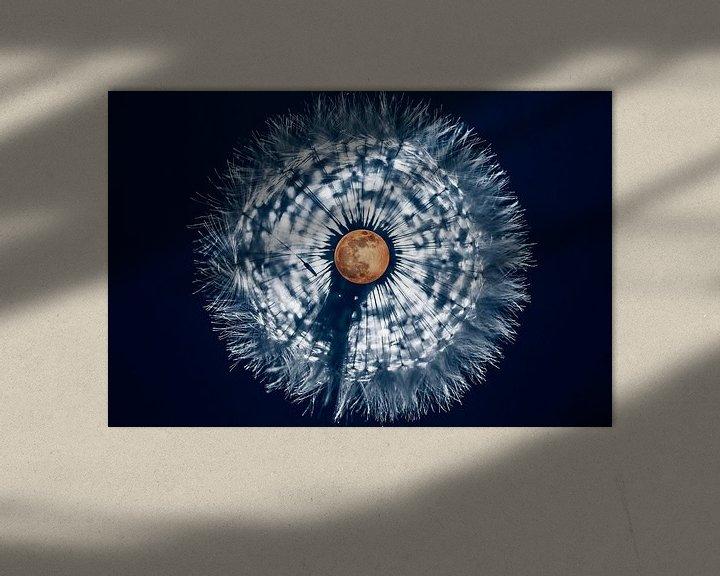 Sfeerimpressie: Volle maan in paardenbloem van Stephan Zaun