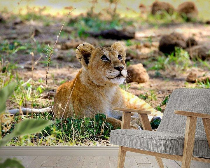 Sfeerimpressie behang: Dromend leeuwenwelp in de Serengeti van Daphne de Vries