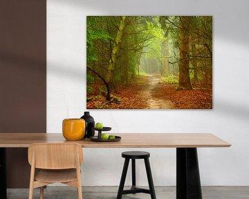Im Wald... von Caroline Lichthart