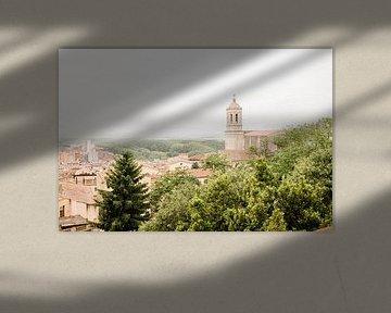 Kathedraal van Girona van Djuli Bravenboer