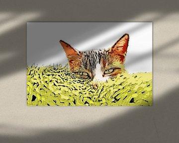 Kattengras van Petra Dreiling-Schewe