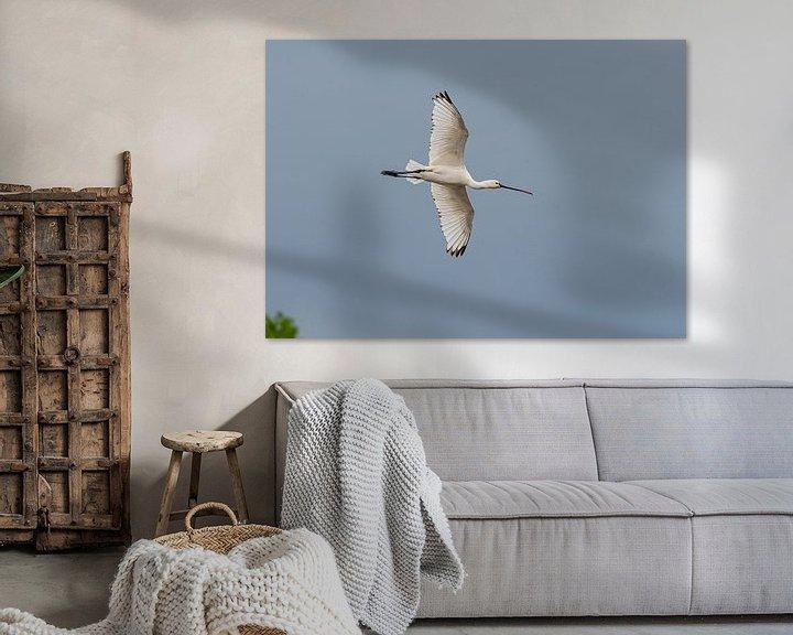 Beispiel: Fliegender Löffelreiher von Merijn Loch
