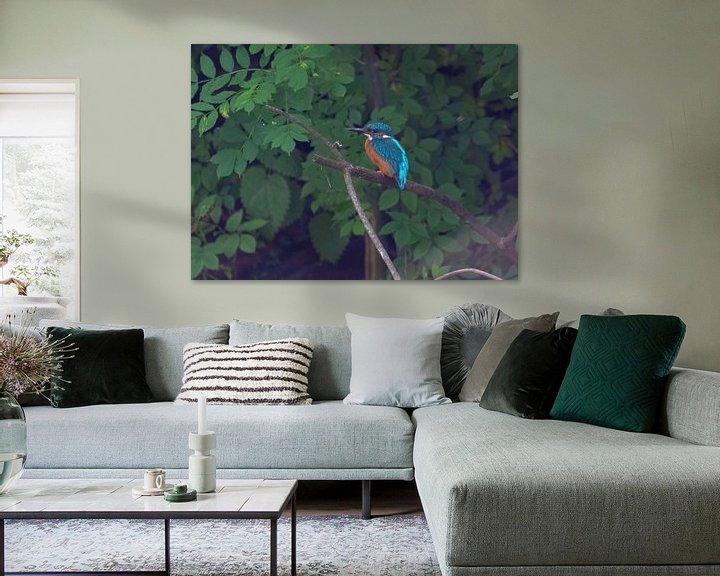 Beispiel: Die Eisvögel von Merijn Loch