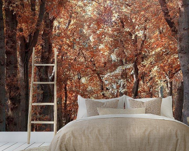 Impression: Une forêt aux couleurs de l'automne sur Miranda van Hulst