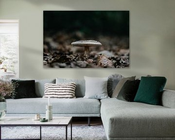 Grote Amaniet. van Prisca Visser