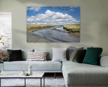 Salzwiesen in Nordfriesland von Peter Eckert