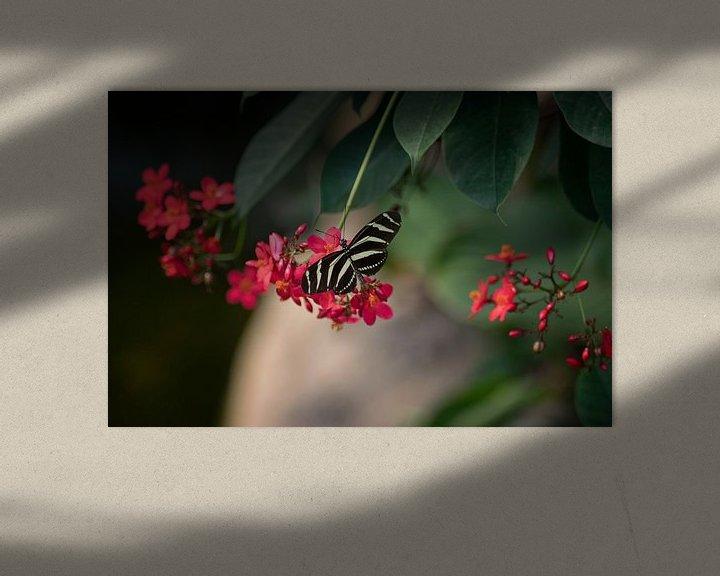 Beispiel: Schmetterling von Linda Lu