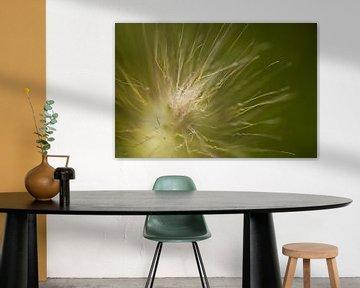 Blume 3 von Esther Erkelens
