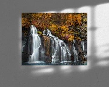 Autumn falls van Gunther Cleemput