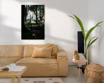 Spannender Wald von simone swart