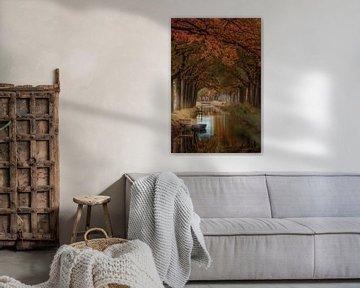 Herfst in Friesland van Marcel Kieffer