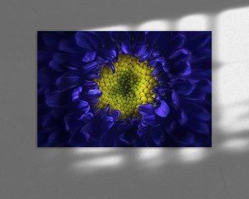 blaue Dahlie von Anneliese Grünwald-Märkl