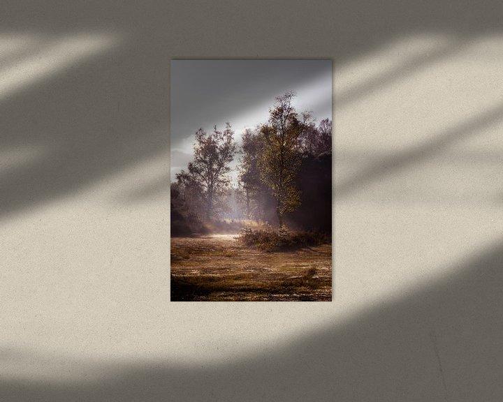 Sfeerimpressie: Winter op de Heide van Inez VAN DE WEYER