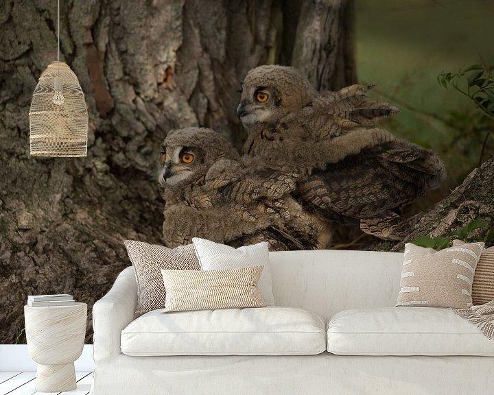 Sfeerimpressie behang: jonge uilen van hanny bosveld