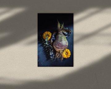 Herfst van Susan Lambeck