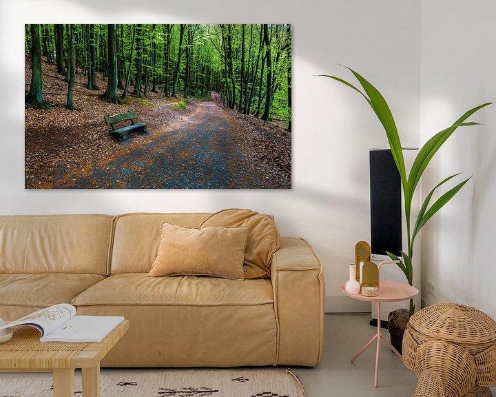 Impression: Chemin forestier avec banc sur Frank Herrmann