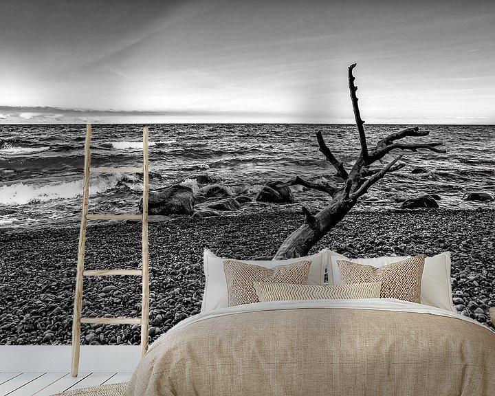Impression: Bois flotté sur la plage sur Frank Herrmann