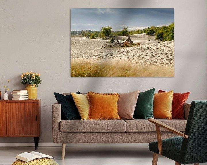 Sfeerimpressie: Nederlandse Sahara van Mark Bolijn