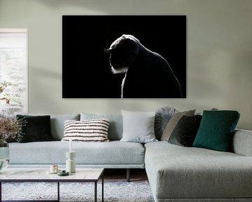 Affe im Gegenlicht von Maurice van de Waarsenburg