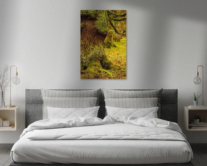 Beispiel: Baumallee von Stephan Zaun