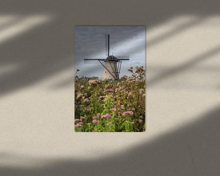 Impression: Moulin à digues pour enfants dans un champ de fleurs sur Erna Böhre