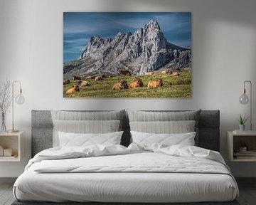 Berglandschap in Noord-Spanje met koeien op de voorgrond van Harrie Muis