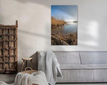 Nederlands Nationaal Park De Biesbosch in het winter seizoen van Ruud Morijn