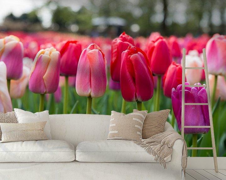 Sfeerimpressie behang: rode tulpen op de bollenvelden in de keukenhof van Compuinfoto .