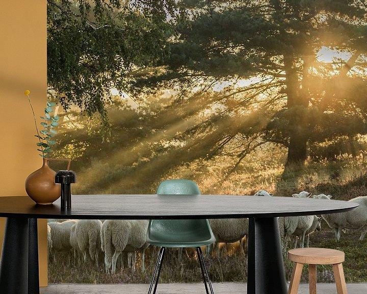 Beispiel fototapete: Im frühen Morgenlicht von Irma Huisman