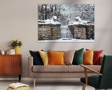 Des lions dans la neige sur Andrea Fuchs