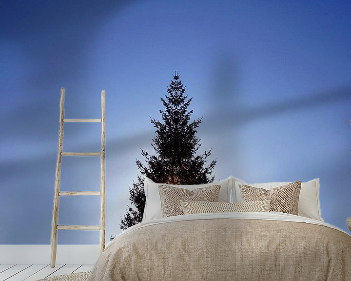 Beispiel fototapete: Weihnachtsbaum im Gegenlicht von Markus Jerko