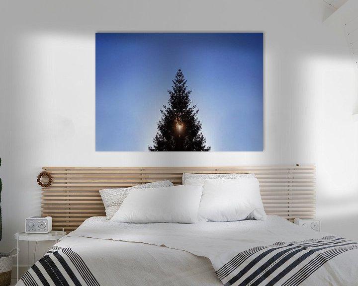 Beispiel: Weihnachtsbaum im Gegenlicht von Markus Jerko
