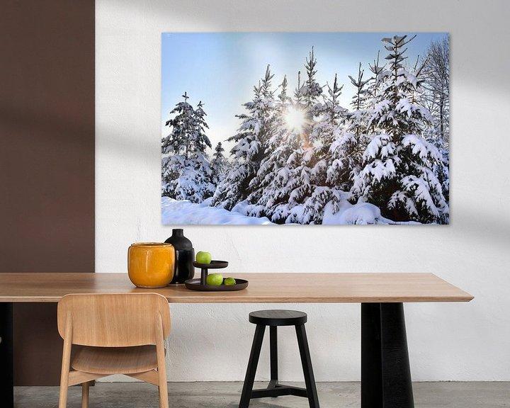Beispiel: Verschneite Bäume von Markus Jerko