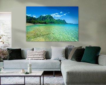 LP 71200016 Klares türkisfarbenes Meerwasser von BeeldigBeeld Food & Lifestyle