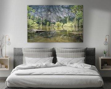 Mirror Lake van Robby van Vliet