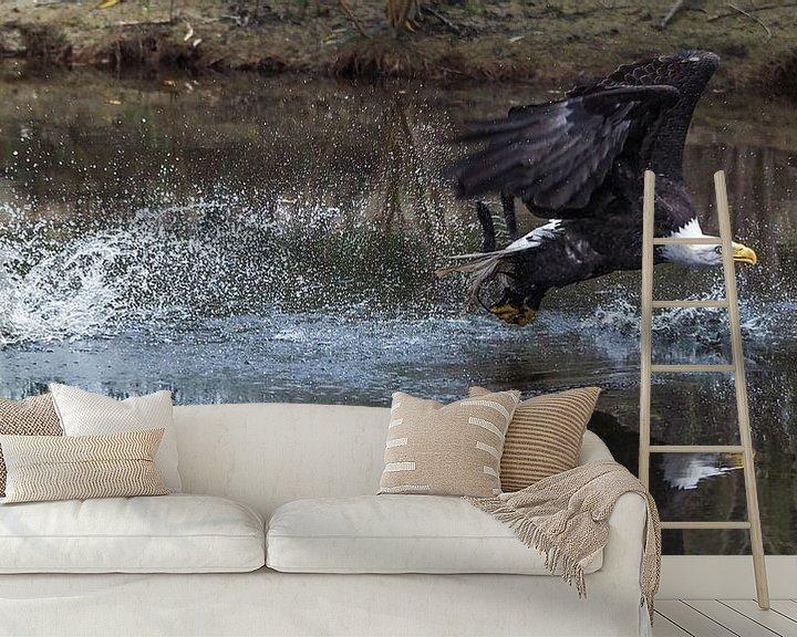 Beispiel fototapete: Seeadler ( Herzog ) von Loek Lobel