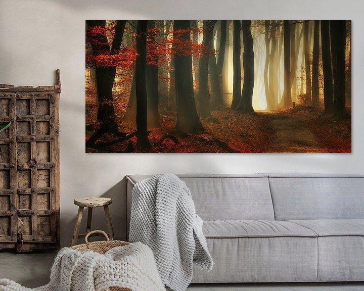 Sfeerimpressie: Rode herfst (landscape) van Rigo Meens