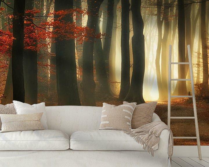 Sfeerimpressie behang: Rode herfst (landscape) van Rigo Meens