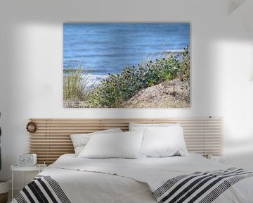 Blaue Stranddistel von Barbara Brolsma