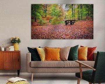 Het Speulder- en Sprielderbos in de herfst van eric van der eijk