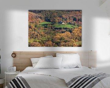 Genießen Sie den Herbst 2020 in Süd-Limburg