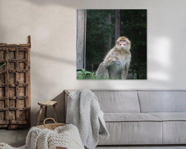 Beispiel: Der lächelnde Affe von Elke Dag Een Foto