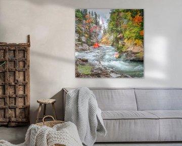 Waterval in de herfst in Canada van Rietje Bulthuis