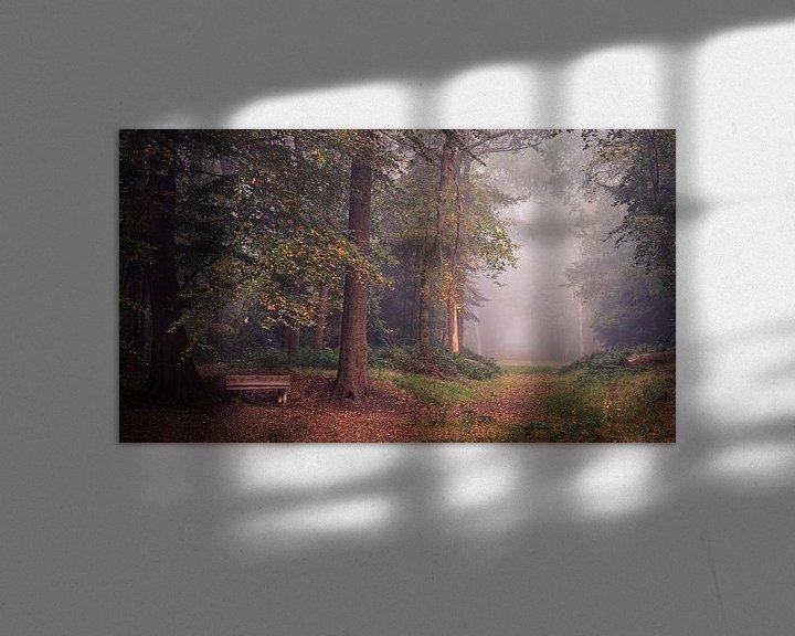 Sfeerimpressie: Herfst in het Slochterbos van Marga Vroom