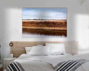 Hollands landschap van Jolene van den Berg