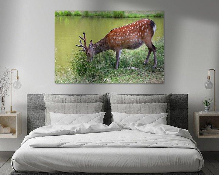 Beispiel: Hirsch am Gewässer von Heike Hultsch