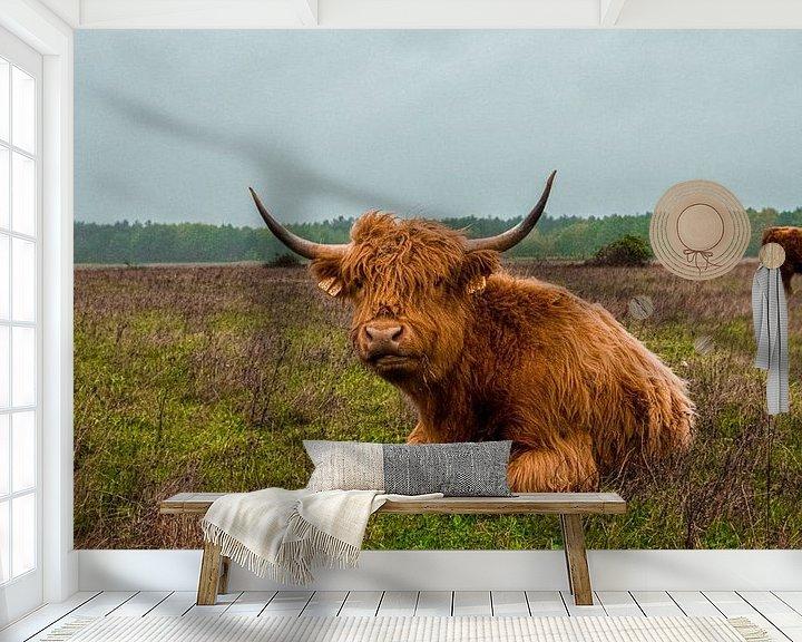 Sfeerimpressie behang: Schotse hooglander   Landgoed Huis ter Heide van Freddie de Roeck