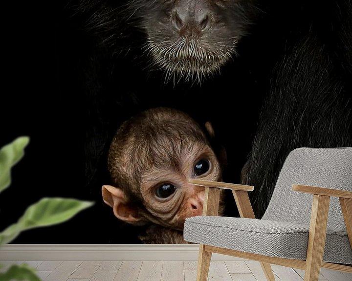 Beispiel fototapete: Mutter Kolumbianischer Pendelaffe mit Kleiner von Amanda Blom
