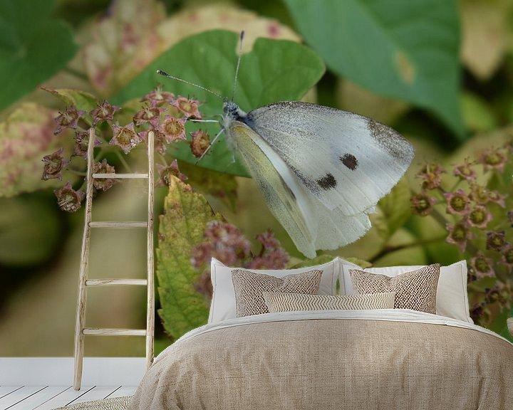 Beispiel fototapete: Der Schmetterling auf dem Blatt von Elke Dag Een Foto